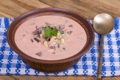 Холодный борщ - специальность на горячие летние дни Vegetable холодный суп с свеклой, огурцом, картошкой, radsih и яичком конец в Стоковые Фото