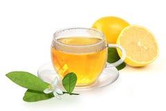 холодный горячий лимон Стоковые Изображения RF