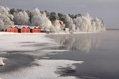 холодный день Стоковые Изображения