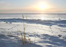 холодный заход солнца Стоковые Фото