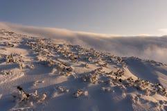 Холодный ландшафт зимы в горах Tatra Стоковое Изображение RF