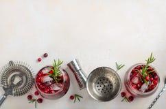 Холодный освежающий напиток с клюквами и розмариновым маслом на белой конкретной предпосылке стоковые фото