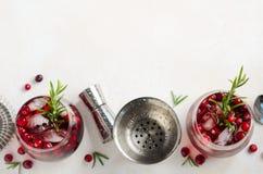 Холодный освежающий напиток с клюквами и розмариновым маслом на белой конкретной предпосылке стоковые фотографии rf