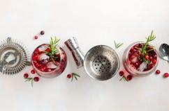 Холодный освежающий напиток с клюквами и розмариновым маслом на белой конкретной предпосылке стоковое изображение