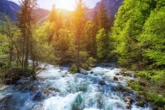 Холодный поток горы приходя от водопада Savica, ne Sava реки стоковые фото