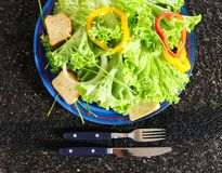 холодный салат Стоковое Изображение
