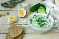 Холодный суп кефира с огурцом Стоковое Фото