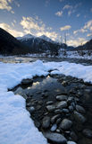 холод красит зиму Стоковое фото RF