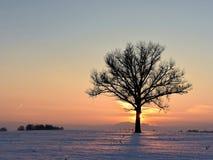 Холод, но красочный вечер зимы в Литве стоковая фотография