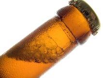 холод пива Стоковые Фото