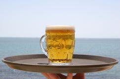 холод пива Стоковые Изображения