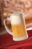 холод пива Стоковая Фотография RF