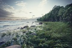 холод пляжа Стоковая Фотография