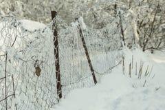 Холод предпосылки зимы льда снега Стоковые Изображения
