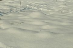 Холод предпосылки зимы льда снега Стоковое Фото