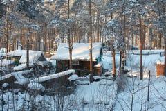 холодная русская зима села Сибиря Стоковые Фото