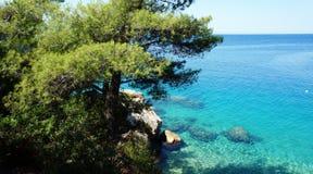 Хорватский пляж Стоковое Изображение RF