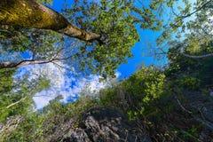 Хорошая гора взгляда Стоковое Изображение RF