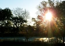 Хорошее красивое утро Стоковая Фотография