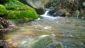 Хороший день в озере green nature стоковое изображение rf
