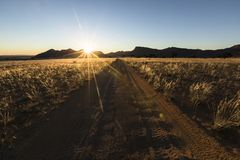 Хорошо используемая, пылевоздушная дорога пустыни к нигде Южная Намибия Окружать пейзажа горы S стоковая фотография rf