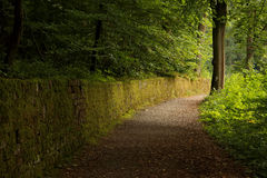 Хорошо освещенный путь Стоковые Изображения