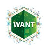 Хотеть флористическую кнопку шестиугольника зеленого цвета картины заводов иллюстрация штока