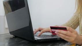Ходить по магазинам женщины онлайн на компьтер-книжке с кредитной карточкой Стоковая Фотография RF