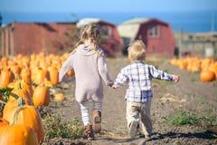 Ход мальчика и девушки для того чтобы выбрать тыкву на ферме Стоковые Изображения RF