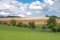 Холмистые луга и поля в лете Стоковое Изображение RF
