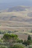 холмистый ландшафт Стоковые Фото