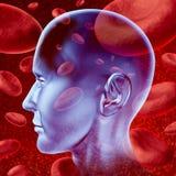 ход мозга Стоковые Фотографии RF