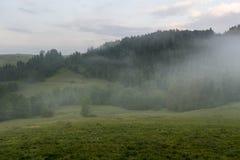 Холмы в тумане утра Стоковое Изображение