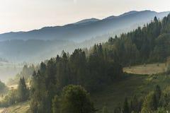 Холмы в тумане утра Стоковые Фотографии RF