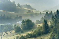 Холмы в тумане утра Стоковые Изображения RF