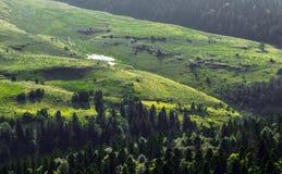 Холмы горы в Adygeya Стоковое Фото