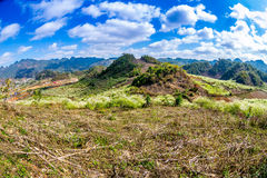 Холмы и горы с цветениями сливы на славный день Стоковые Фотографии RF