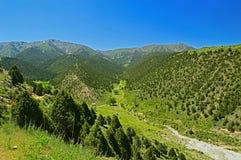 Холмы и горы Стоковая Фотография RF