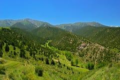 Холмы и горы Стоковые Изображения