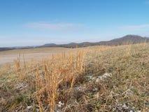 Холмы Кентукки Стоковая Фотография RF