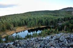 Холмы на восходе солнца Стоковые Фотографии RF