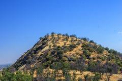 Холмы на дороге парка секвойи, Калифорнии Стоковая Фотография RF