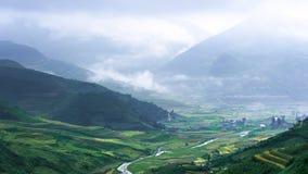 Холмы полей риса террасных Стоковые Фотографии RF