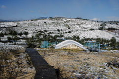 холмы предгорья landscape линии 2 зима виноградника села Стоковое Изображение RF