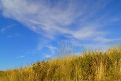 Холмы степи Стоковые Фотографии RF