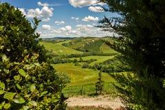 Холмы Тосканы Стоковое фото RF