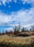 Холмы Трансильвании стоковые изображения