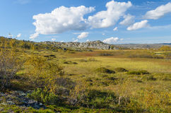 Холмы, тундра, утесы и небо с белыми облаками Стоковые Фотографии RF