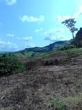 холмы Стоковые Изображения