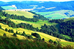 холмы Стоковые Фото